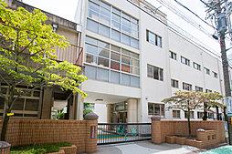 市立葵小学校 約480m(徒歩6分)
