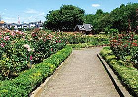 公園が多数あり、緑豊かで癒されます