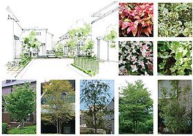 美しい木々が連なるストリートガーデン。
