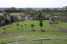 ひょうたん山の頂上から公園南側の風景