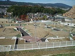 Green Hill 王寺