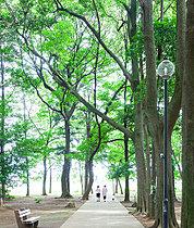 八千代台西市民の森 (現地より約10m/徒歩1分)