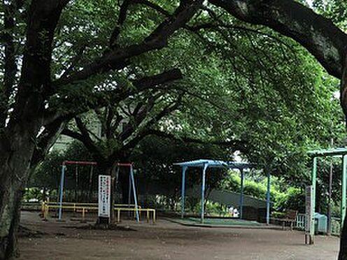 アパート-目黒区八雲2丁目 周辺環境:宮前公園