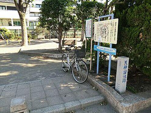 マンション(建物全部)-世田谷区桜3丁目 天神公園