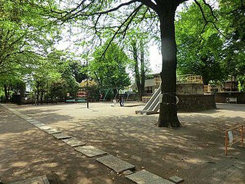 アパート-中野区江古田2丁目 百観音公園