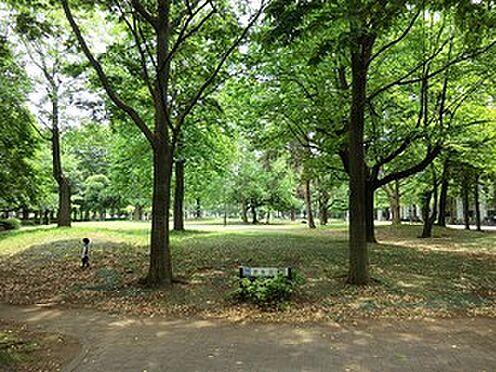 建物全部その他-新宿区大久保2丁目 戸山公園
