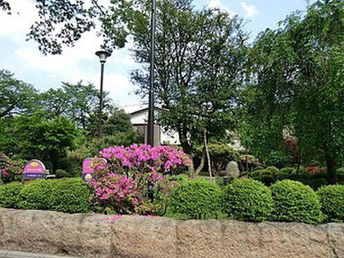 マンション(建物全部)-練馬区関町南4丁目 周辺環境:はなもみじ公園