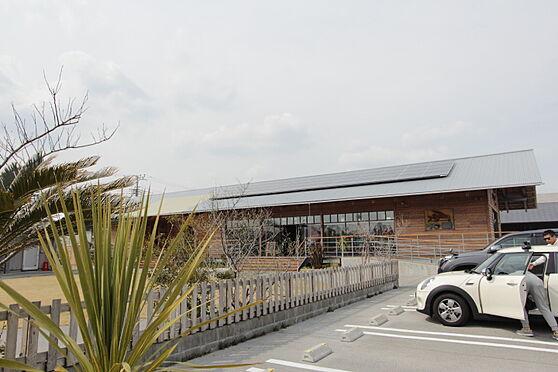 土地-長生郡一宮町東浪見 すぐそばにパタゴニアサーフあります。
