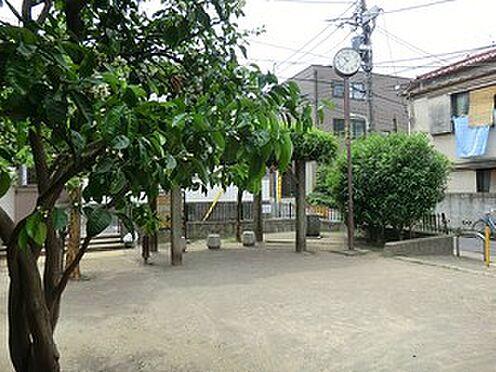 マンション(建物全部)-渋谷区東4丁目 周辺環境:氷川みかん公園
