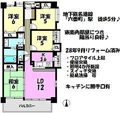 東南角部屋 広々バルコニー和室も有り