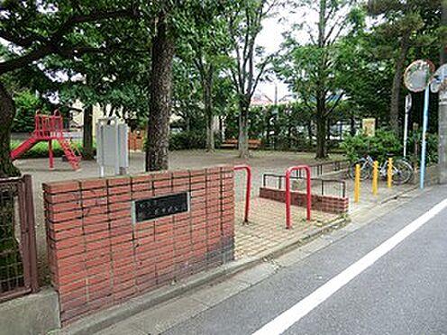 マンション(建物全部)-杉並区成田東4丁目 周辺環境:松ノ木中央公園