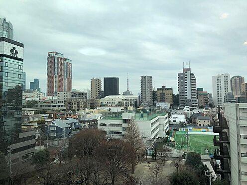 マンション(建物一部)-港区西麻布4丁目 眺望