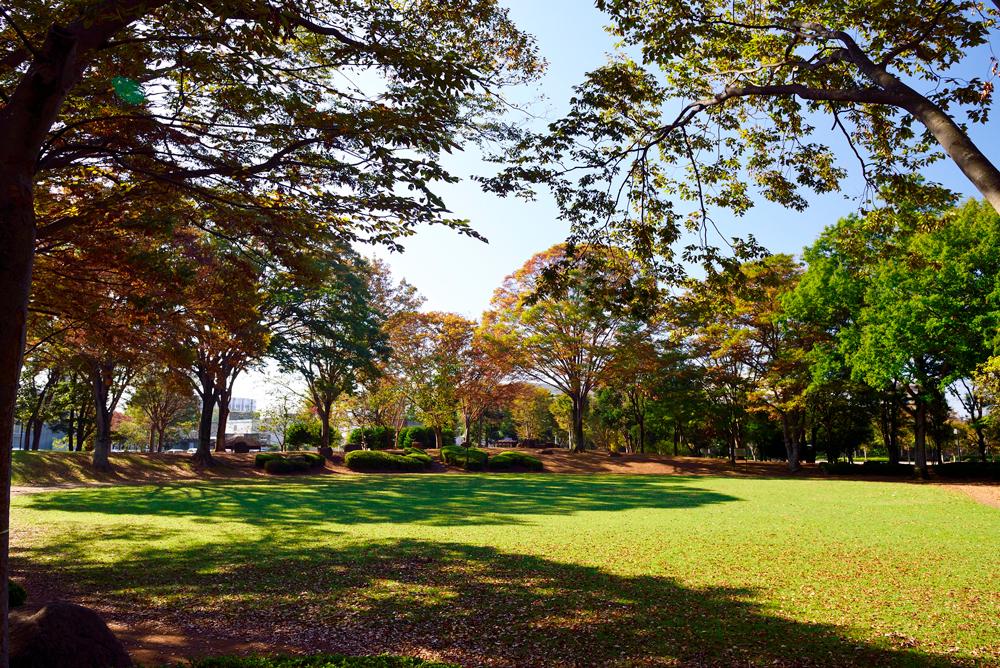 竹園公園 約370m(徒歩5分)