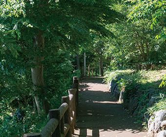八ヶ上西緑地公園 約910m(徒歩12分)