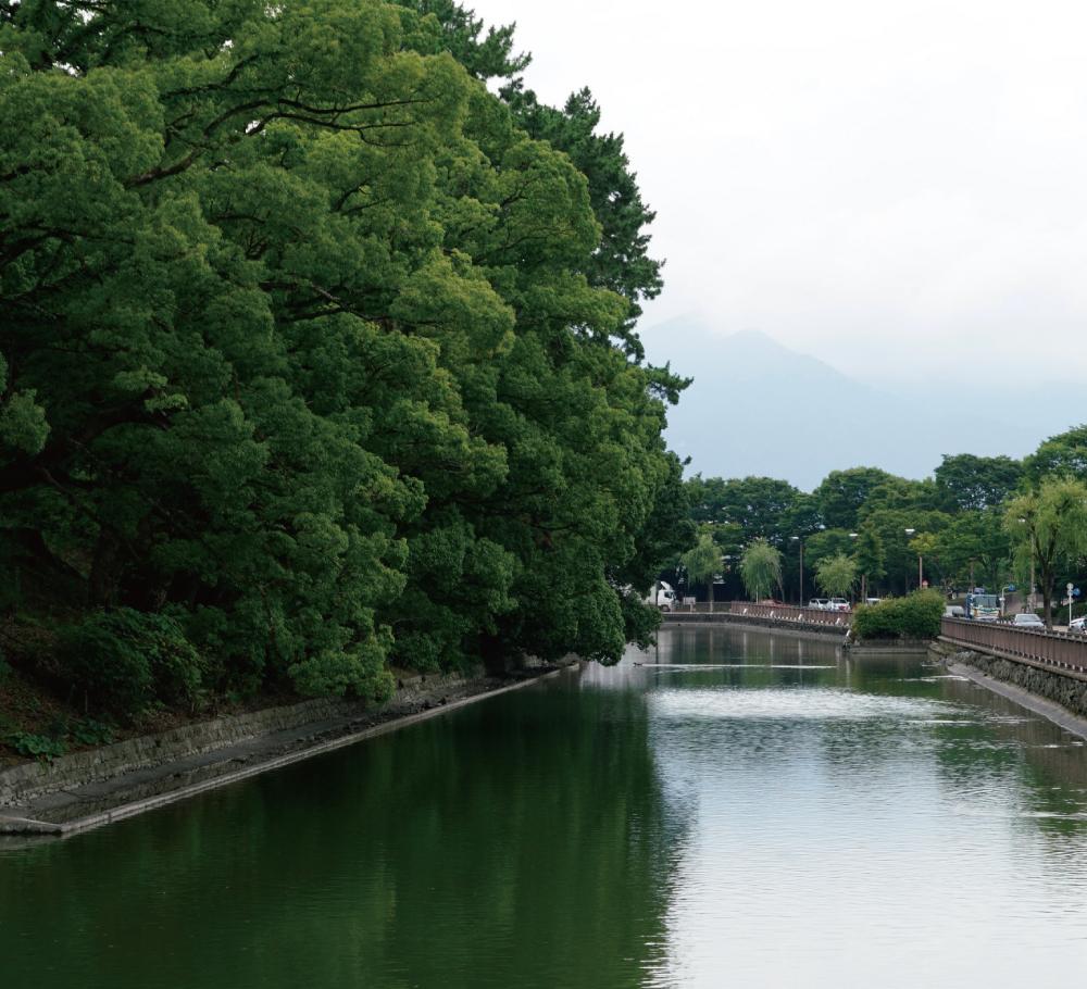 駿府城公園 約850m(徒歩11分)