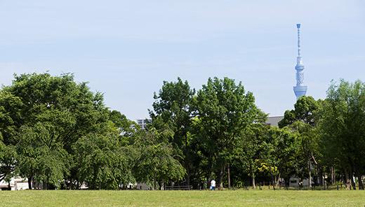 都立尾久の原公園 約560m(徒歩7分)