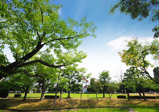 駅南平和公園 約60m(徒歩1分)