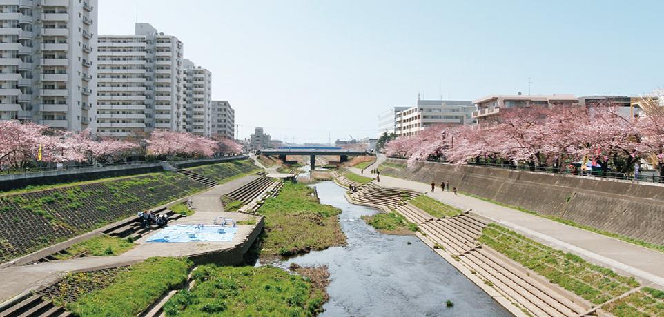 柏尾川 約940m(徒歩12分)