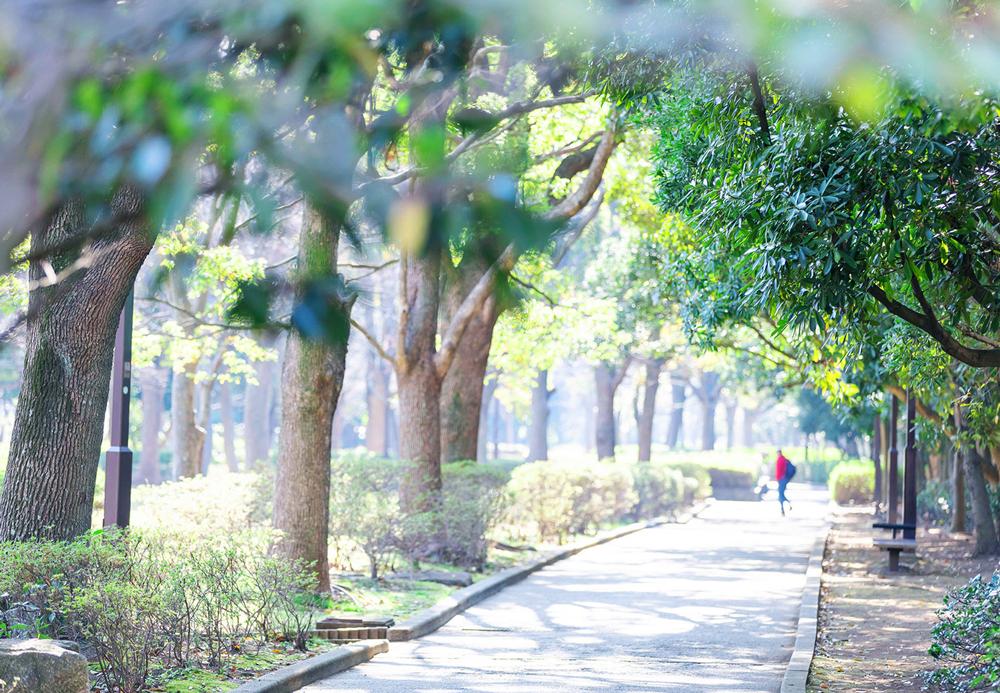 清新町緑地 約540m(徒歩7分)