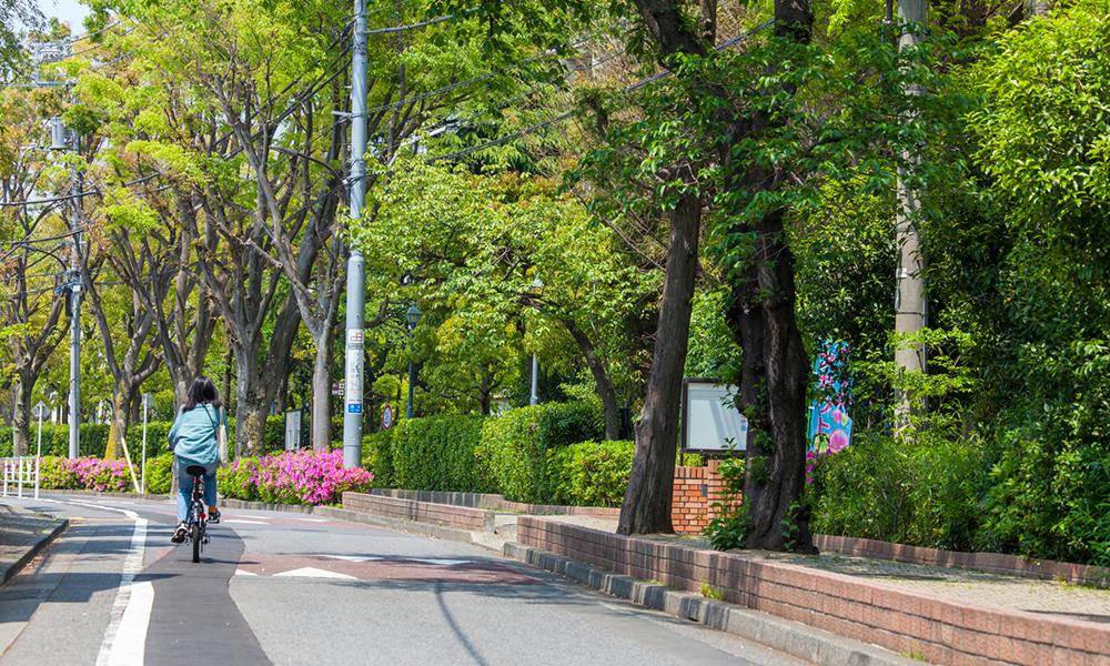 代々木中学校周辺写真 約180m(徒歩3分)