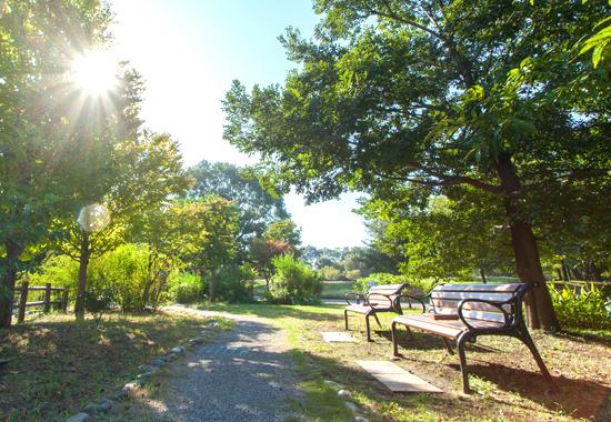 西東京いこいの森公園 約330m(徒歩5分)(平成25年10月撮影)