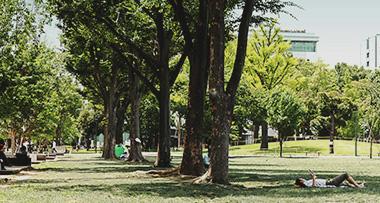 区立中野四季の森公園 約1,330m(徒歩17分)