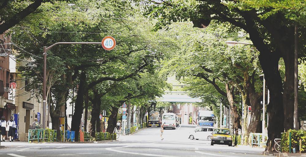 中野通り 約10m(徒歩1分)