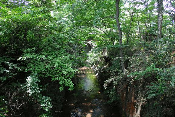 玉川上水緑道 約340m(徒歩5分)