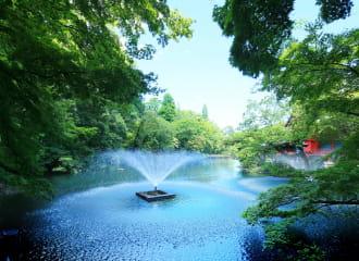 井の頭恩賜公園 約1,040m(徒歩13分)