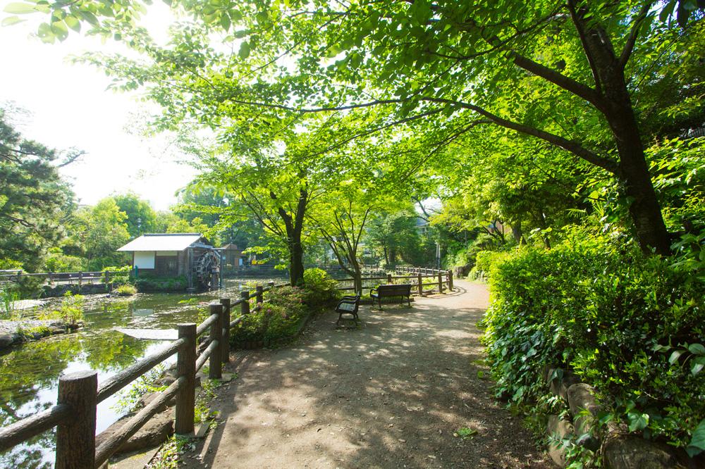 鍋島松濤公園 約300m(徒歩4分)