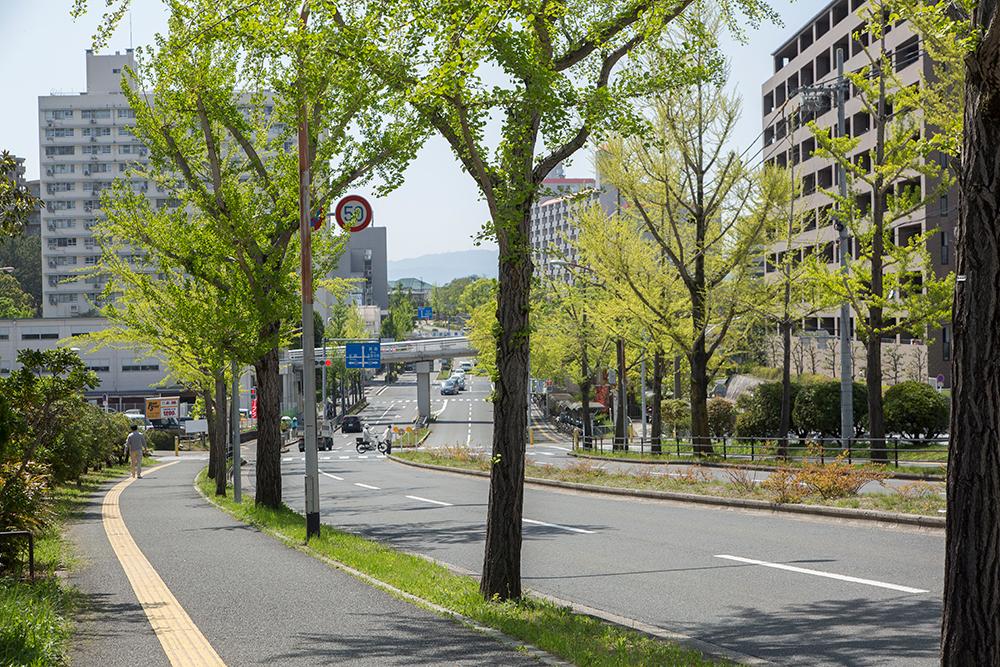 現地周辺の街並み 約480m(徒歩6分)(撮影日:2018年4月)