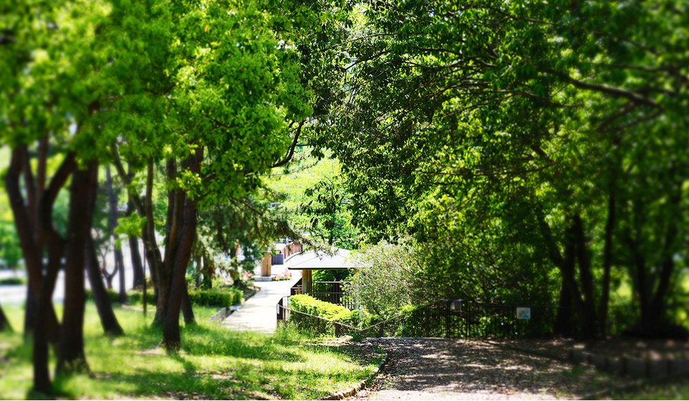藤白公園 約30m(徒歩1分)
