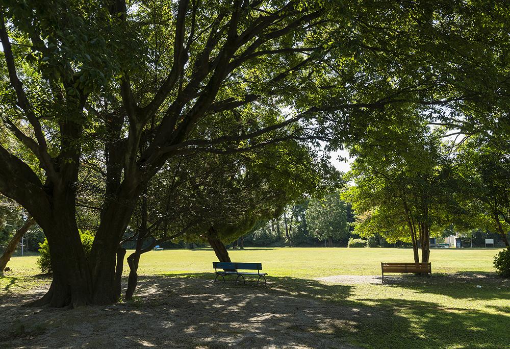 加納城跡・加納公園 約790m(徒歩10分)
