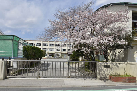 東渕江小学校 約470m(徒歩6分)