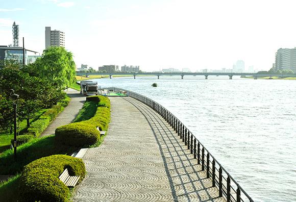 信濃川やすらぎ堤 約400m(徒歩5分)※1