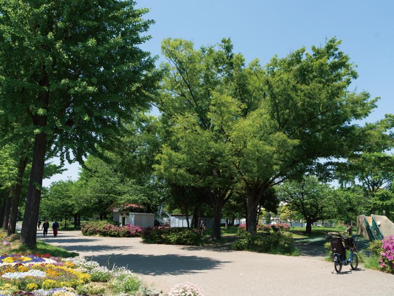 諏訪公園 約190m(徒歩3分/自転車1分)