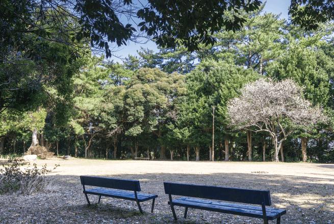 牛山公園 約550m(徒歩7分)