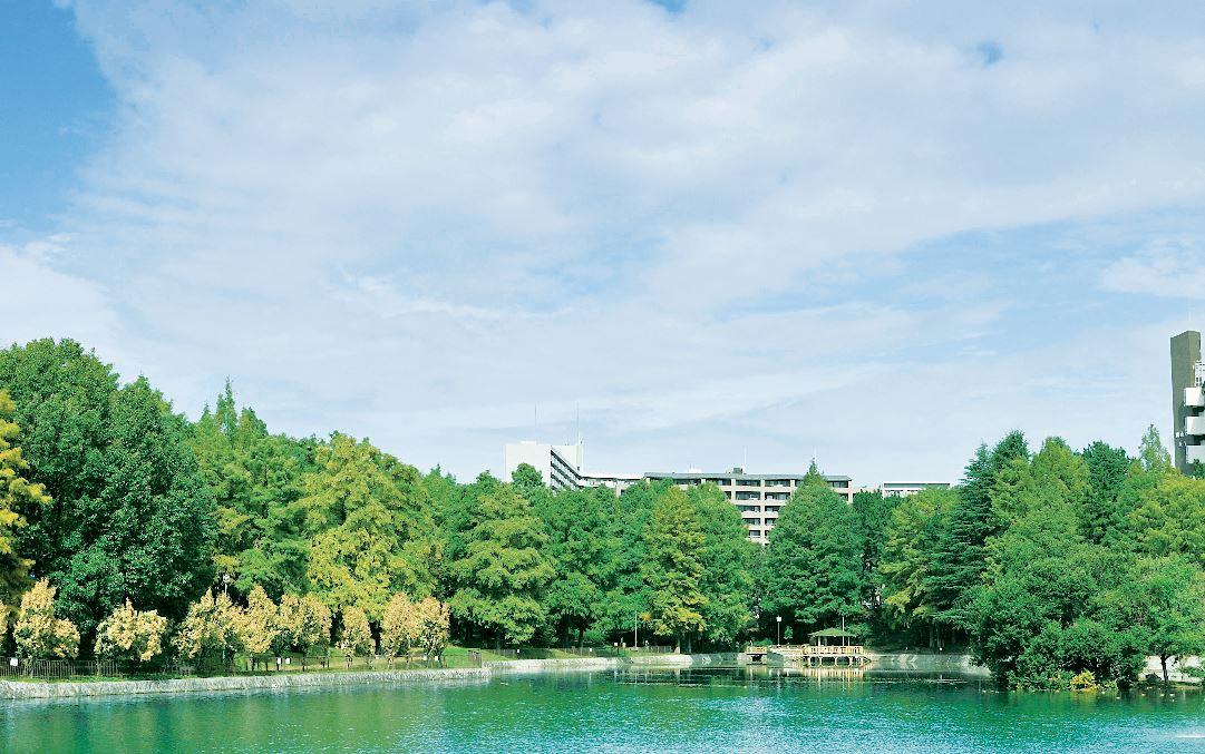 桃山公園 約240m(徒歩3分)