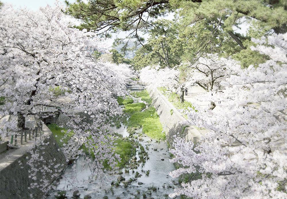 夙川公園 約860m(徒歩11分)