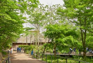 赤羽自然観察公園 約1,650m(徒歩21分)