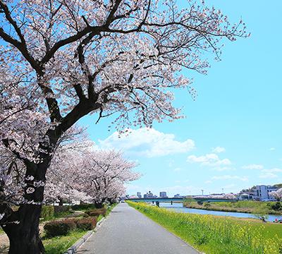 桜川 約680m(徒歩9分)