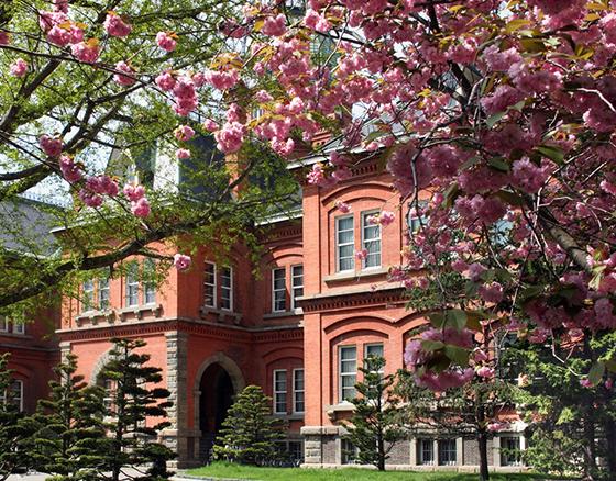 北海道庁旧本庁舎 約3,160m