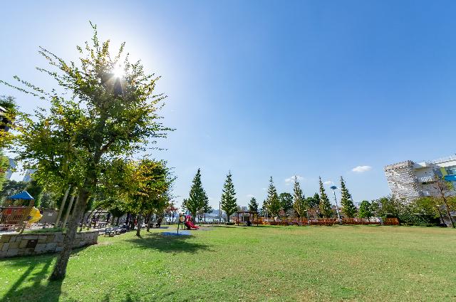 お台場レインボー公園 約830m(徒歩11分)