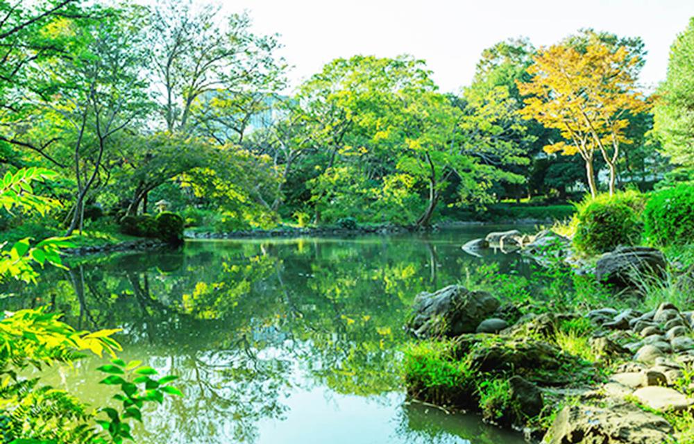 有栖川宮記念公園 約1,060m(徒歩14分)