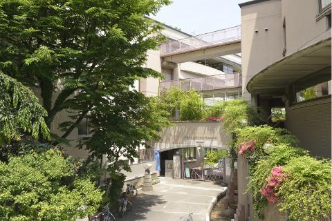 上野小学校・清島幼稚園 約310m(徒歩4分)