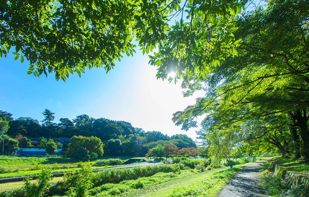 小金井宮地楽器ホール(提供写真) EAST:約60m(徒歩1分) WEST:約180m(徒歩3分)