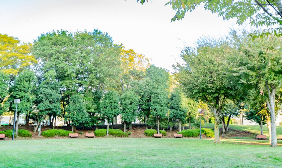 竹園公園 約530m(徒歩7分)