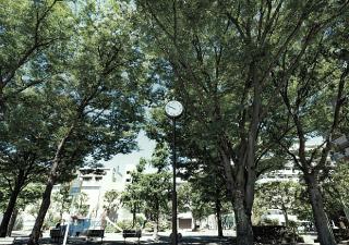 宮田町公園 約630m(徒歩8分)