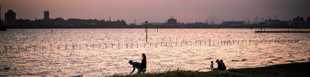 ふなばし三番瀬海浜公園 約5,490m(車11分)