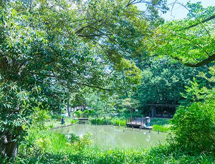 藤が丘公園 約1,530m(徒歩20分)